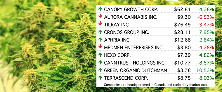 Each newsletter includes a listing of the top 10 cannabis stocks by market cap to provide readers with a snapshot of the market as they start their week.