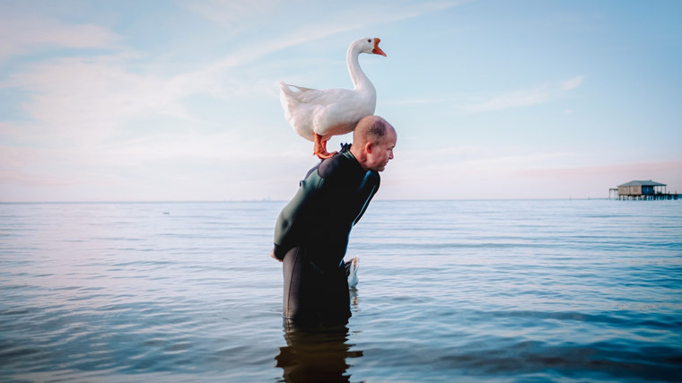 """The lessons that a goose has taught me about creating a connection with nature and with life transcends into my relationships with people and how not to take that for granted."" — Tracy Wilhelm (Red Clay Media)"