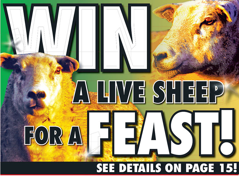 The Daily Sun's contest offering readers a sheep for their holiday feast was well received by the local community.
