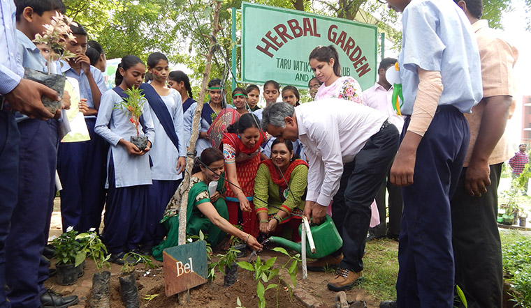 Dainik Bhaskar readers who planted and raised saplings connected with their young trees and began to see them as members of the family.