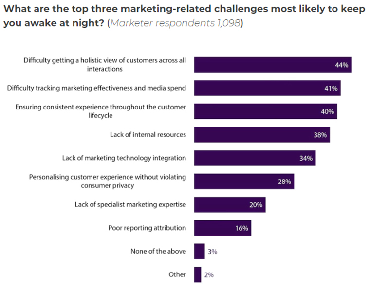 Marketing professionals say they struggle with getting a holistic understanding of their customers.
