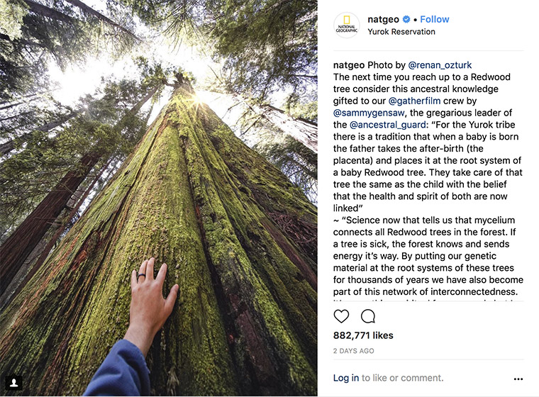 National Geographic is one of the most successful brands on Instagram, in part because its posts have a common theme.