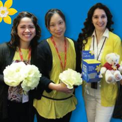 Canadian Cancer Society Daffodil Campaign