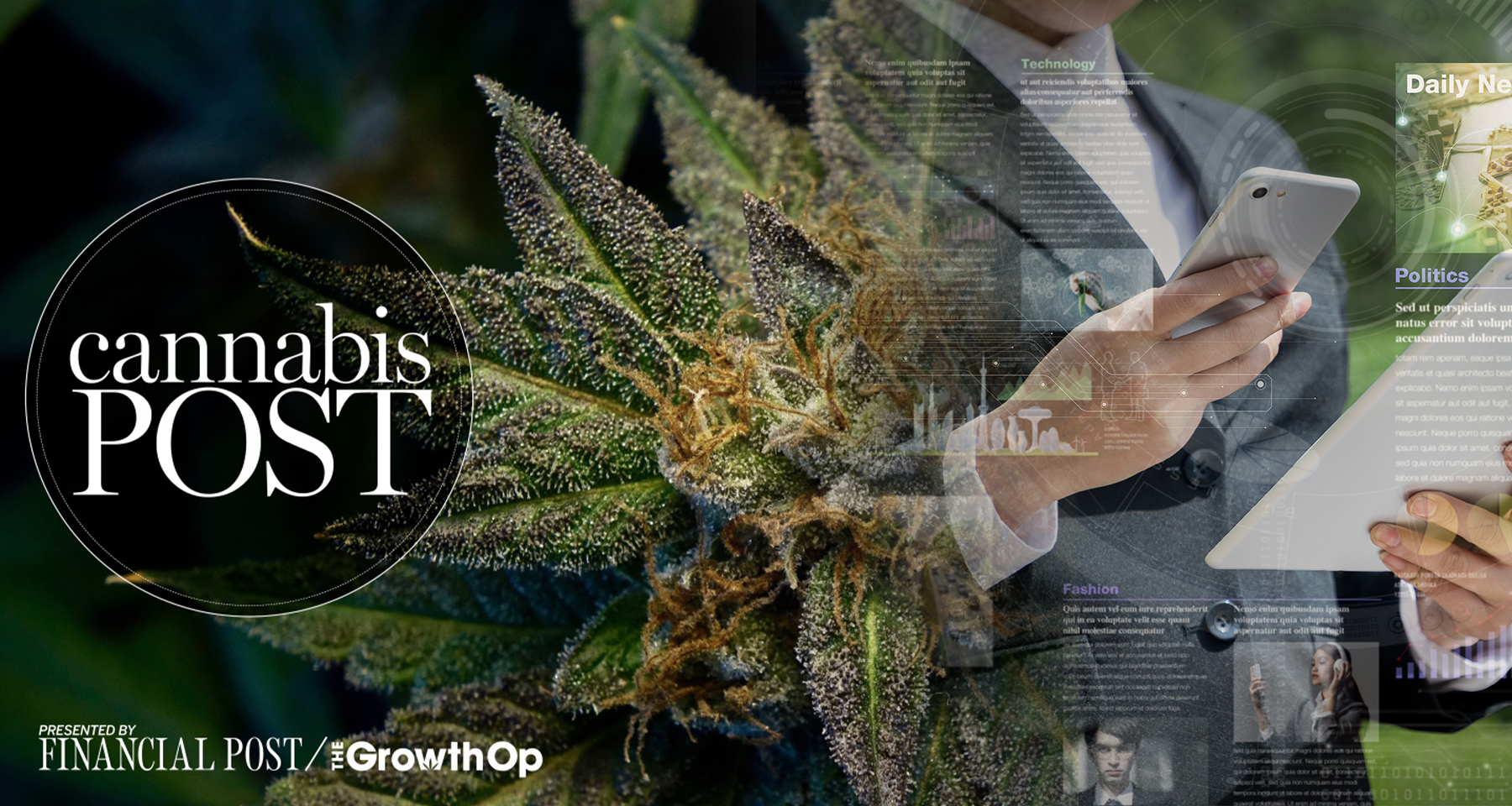 Cannabis Post newsletter creates audience, advertiser opportunities