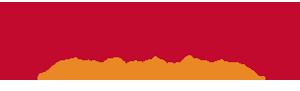 LocoVida logo